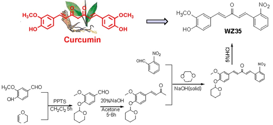 Curcumin and Curcumin-based derivatives as anti-cancer agents: Recent Nano-Synthetic Methodologies and Anti-cancer Therapeutic Mechanisms