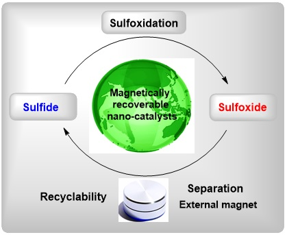 MNPs-supported acidic catalysts in oxidation of sulfides to sulfoxides