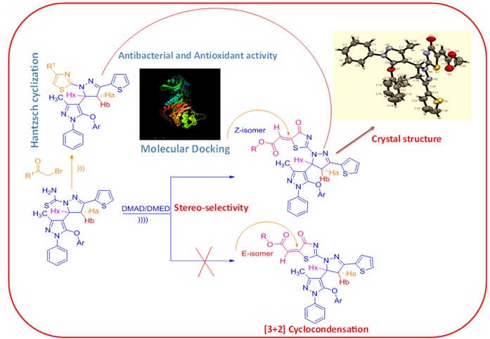 Ultrasound-assisted synthesis of auxiliary pyrazoline integrated thiazole, thiazolone derivative and their biological evaluation