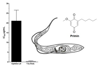 Design, Synthesis, and Testing of Antiprotozoal Activity of Primin and Analogues