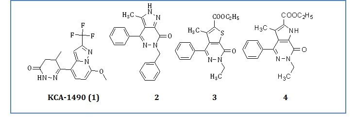 Study of heterocyclic-fused pyridazinone analogues having phosphodiestrase-IV inhibitor activities as anti-inflammatory agents